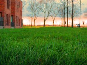 clagett property management